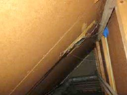 dakdoorvoer-vochtsporen.jpg